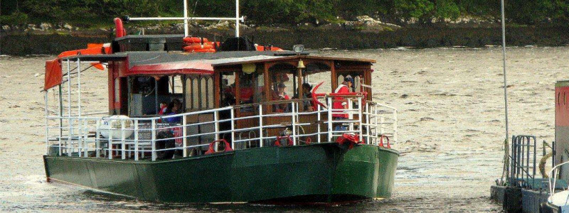 Seafari Eco Nature and Seal Watching Cruise Kerry